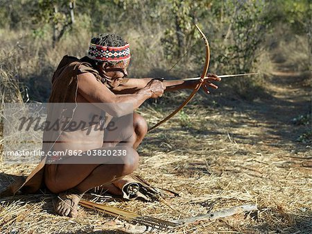 A NIIS hunter gatherer takes aim with his bow and arrow.The arrows are poisoned with the sap of a species of commiphora tree.They have detachable heads and no flights. Until recently, their way of life had remained unchanged for thousands of years.Few now live solely by hunting and gathering. Stock Photo - Rights-Managed, Image code: 862-03820238