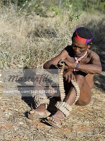 A NIIS hunte gatherer winds strings of rattles round his legs in preparation for a dance.These rattles are made from specially dried cocoons in which are placed tiny chips of stone.The NIIS are a part of the San people, often referred to as Bushmen.They differ in appearance from the rest of black Africa having yellowish skin and being lightly boned, lean and muscular. Stock Photo - Rights-Managed, Image code: 862-03820244