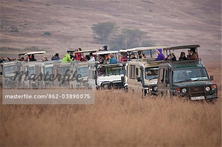 Safari tourists watching game on the Serengeti in Tanzania Stock Photo - Rights-Managed, Image code: 862-03890075