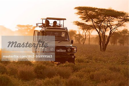 Safari vehicle on a game drive at dusk in the Ndutu region of the Serengeti National Park, Tanzania. Stock Photo - Rights-Managed, Image code: 862-05999563