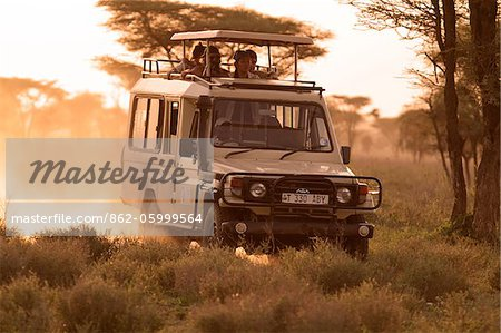Safari vehicle on a game drive at dusk in the Ndutu region of the Serengeti National Park, Tanzania. Stock Photo - Rights-Managed, Image code: 862-05999564