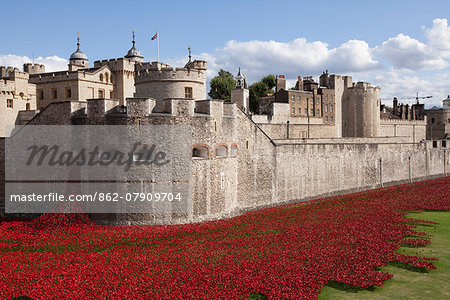 UK, England, London. Blood Swept Lands and Seas of Red, a major art installation at the Tower of London, marking one hundred years since the first full day of Britain's involvement in the First World War. Stock Photo - Rights-Managed, Image code: 862-07909704