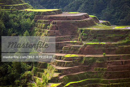 Asia, South East Asia, Philippines, Cordilleras, Banaue; UNESCO World heritage listed Ifugao rice terraces Stock Photo - Rights-Managed, Image code: 862-07910418