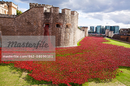 UK, England, London. Blood Swept Lands and Seas of Red, a major art installation at the Tower of London, marking one hundred years since the first full day of Britain's involvement in the First World War. Stock Photo - Rights-Managed, Image code: 862-08090101
