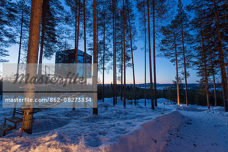 Arctic Circle, Lapland, Scandinavia, Sweden, The Tree Hotel, the Mirror Cube room Stock Photo - Rights-Managed, Image code: 862-08273834