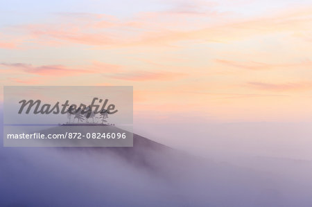 Colmer's Hill in Dorset on a misty autumn morning. Stock Photo - Rights-Managed, Image code: 872-08246096