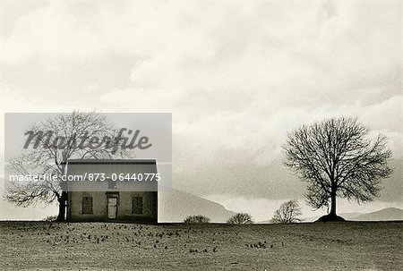 Old Farm House Stock Photo - Rights-Managed, Image code: 873-06440775