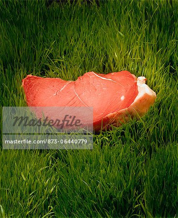 Rump Steak in Grass Stock Photo - Rights-Managed, Image code: 873-06440779