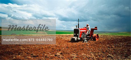 Man Driving Broken Tractor South Africa Stock Photo - Rights-Managed, Image code: 873-06440780