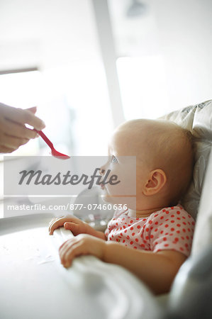 A baby girl eating Stock Photo - Rights-Managed, Image code: 877-07460636
