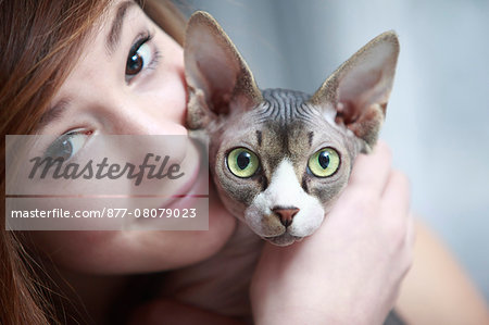 France, teen and sphinx cat. Stock Photo - Rights-Managed, Image code: 877-08079023