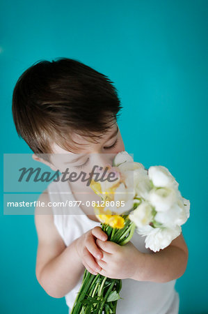 Little boy with flowers Stock Photo - Rights-Managed, Image code: 877-08128085