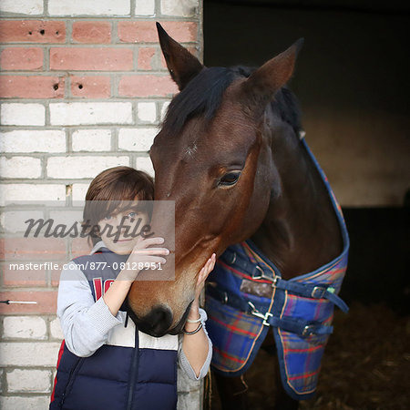 A boy stroking a horse in a stable Stock Photo - Rights-Managed, Image code: 877-08128951