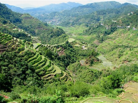 philippine terrace farming - Banaue rice terraces in Ifugao province, Philippines. Stock Photo - Budget Royalty-Free & Subscription, Code: 400-04012117