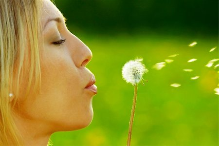 The girl blows on a dandelion on a background of a grass Stock Photo - Budget Royalty-Free & Subscription, Code: 400-04068890