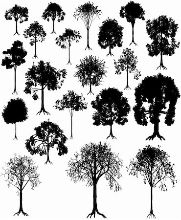 Set of editable vector tree silhouettes from summer and winter Stock Photo - Budget Royalty-Free & Subscription, Code: 400-04076752