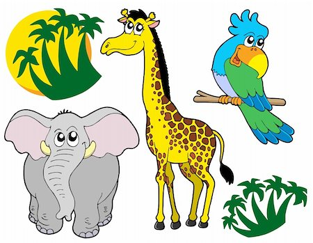 African animals collection 3 - vector illustration. Stock Photo - Budget Royalty-Free & Subscription, Code: 400-04077408