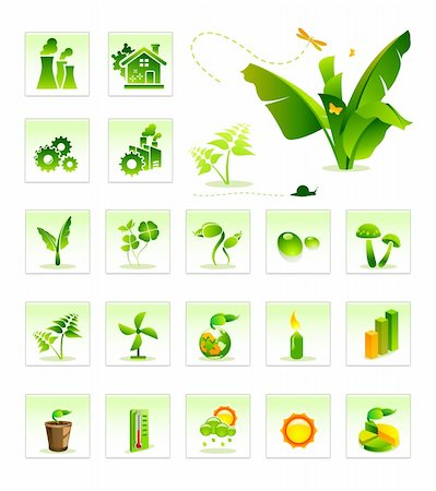 vegetation vector icon illustration Stock Photo - Budget Royalty-Free & Subscription, Code: 400-04089681