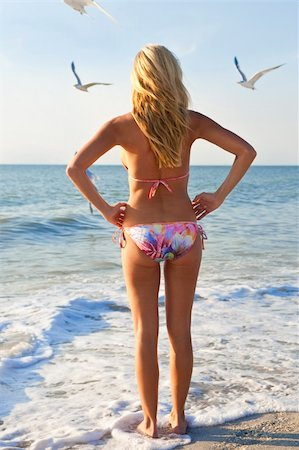 simsearch:400-04002563,k - A beautiful young blond woman wearing a bikini looks out to sea while sea gulls fly around her Stock Photo - Budget Royalty-Free & Subscription, Code: 400-04082840