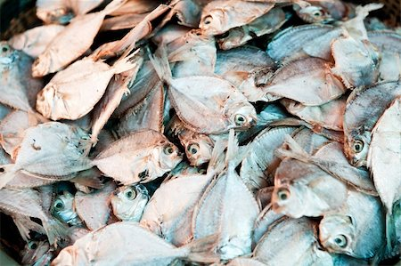 piranha fish - A background of dried white fish Stock Photo - Budget Royalty-Free & Subscription, Code: 400-04091112