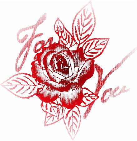 rose for your label Stock Photo - Budget Royalty-Free & Subscription, Code: 400-04118862
