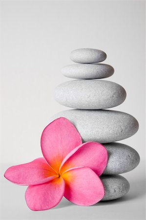 spanishalex (artist) - Stack of white pebbles and pink frangipani flower Stock Photo - Budget Royalty-Free & Subscription, Code: 400-04137821