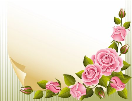 Vector illustration - pink roses and paper Stock Photo - Budget Royalty-Free & Subscription, Code: 400-04161205