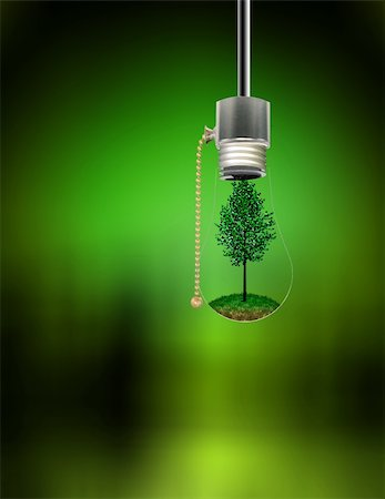 rolffimages (artist) - Tree in Hanging Bulb Stock Photo - Budget Royalty-Free & Subscription, Code: 400-04161257