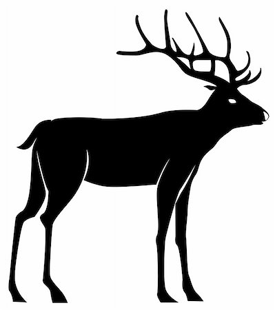 drawing of deer in a white background Stock Photo - Budget Royalty-Free & Subscription, Code: 400-04178047