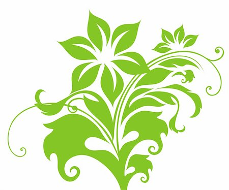 simsearch:400-05235216,k - drawing of green flower pattern in a white background Stock Photo - Budget Royalty-Free & Subscription, Code: 400-04178221