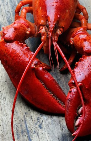 whole red lobster on wood Stock Photo - Budget Royalty-Free & Subscription, Code: 400-04178618