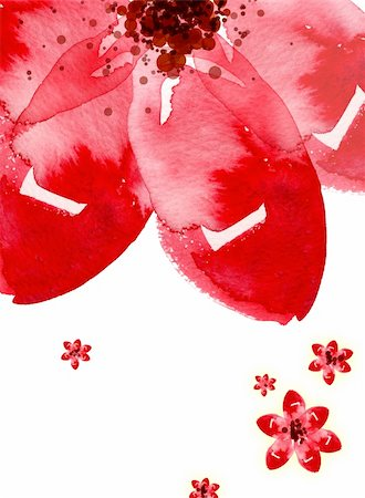 peony illustrations - Hand-painted watercolor flower, large flower. Stock Photo - Budget Royalty-Free & Subscription, Code: 400-04179377
