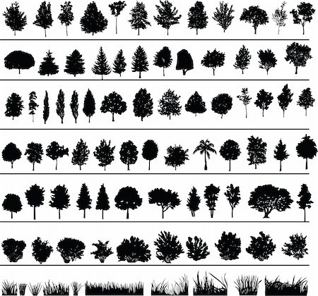 Set of silhouettes of trees, bushes and grass Stock Photo - Budget Royalty-Free & Subscription, Code: 400-04187191