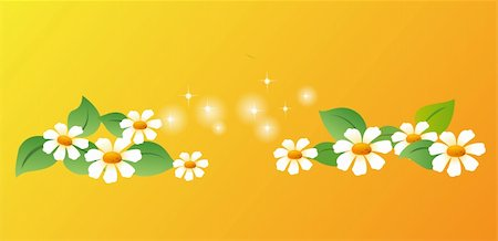 simsearch:400-04697977,k - white daisy with green leaves on a orange background Stock Photo - Budget Royalty-Free & Subscription, Code: 400-04180833