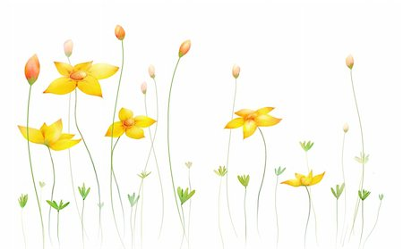 simsearch:400-04697977,k - a beautiful drawing of nice yellow flowers Stock Photo - Budget Royalty-Free & Subscription, Code: 400-04199541
