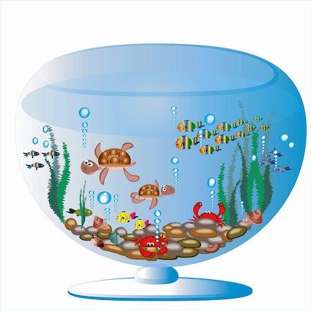 piranha fish - Aquariumwith sea animals. Stock Photo - Budget Royalty-Free & Subscription, Code: 400-04207474