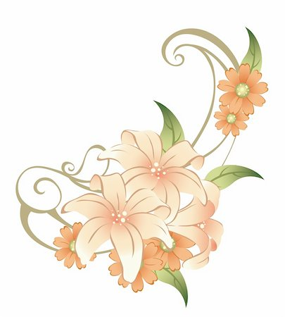 drawing of beautiful flower in a white background Stock Photo - Budget Royalty-Free & Subscription, Code: 400-04201935
