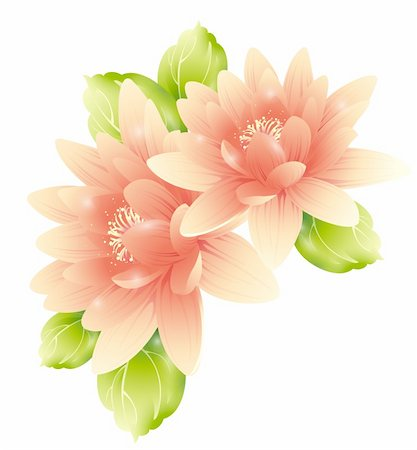 simsearch:400-04697977,k - illustration drawing of  flowers with green leaves Stock Photo - Budget Royalty-Free & Subscription, Code: 400-04201951