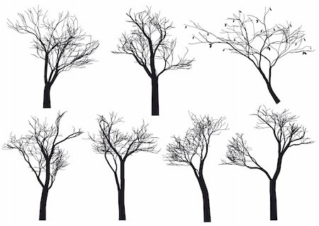 set of detailed tree silhouettes, vector Stock Photo - Budget Royalty-Free & Subscription, Code: 400-04210757