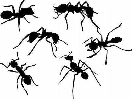 ants silhouette collection vector Stock Photo - Budget Royalty-Free & Subscription, Code: 400-04224319