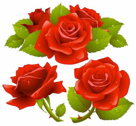 Red roses set Stock Photo - Budget Royalty-Free & Subscription, Code: 400-04228798