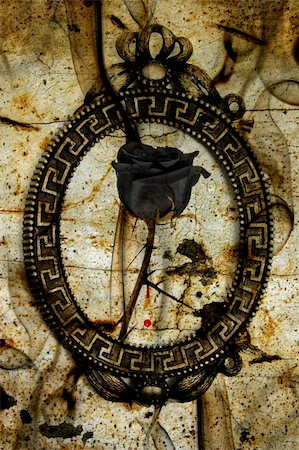 a black rose in a frame on an emo background with blood and smoke Stock Photo - Budget Royalty-Free & Subscription, Code: 400-04221127