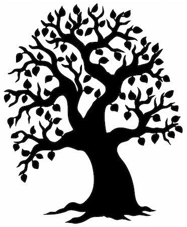 Big leafy tree silhouette - vector illustration. Stock Photo - Budget Royalty-Free & Subscription, Code: 400-04236214