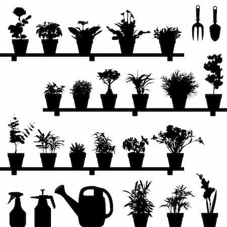 florist vector - A large set of flowers and plants in vase or pot. This is in silhouette version. Stock Photo - Budget Royalty-Free & Subscription, Code: 400-04242105