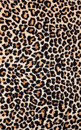 abstract texture of leopard skin Stock Photo - Budget Royalty-Free & Subscription, Code: 400-04259680