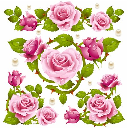 Pink Rose design elements Stock Photo - Budget Royalty-Free & Subscription, Code: 400-04262328