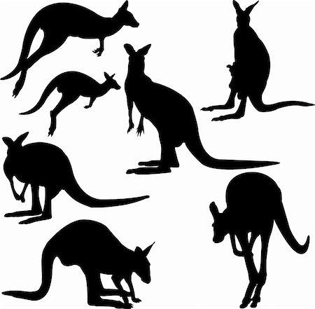 kangaroo - vector Stock Photo - Budget Royalty-Free & Subscription, Code: 400-04295761