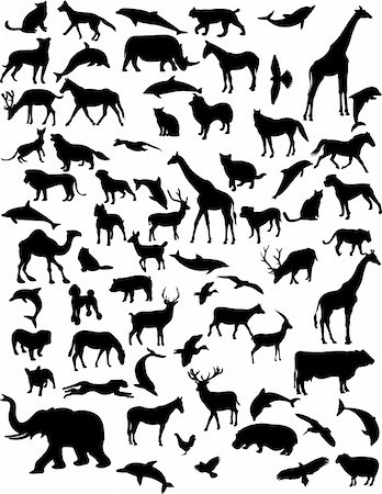 collection of 68 animals - vector Stock Photo - Budget Royalty-Free & Subscription, Code: 400-04297199