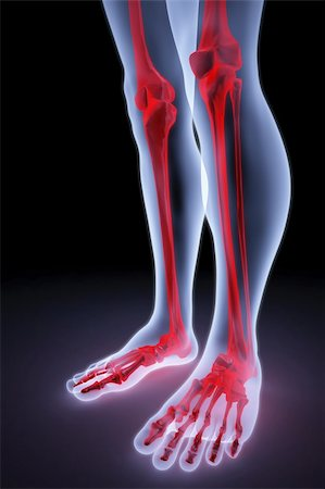 male feet under the X-rays. bones are highlighted in red. Stock Photo - Budget Royalty-Free & Subscription, Code: 400-04291747