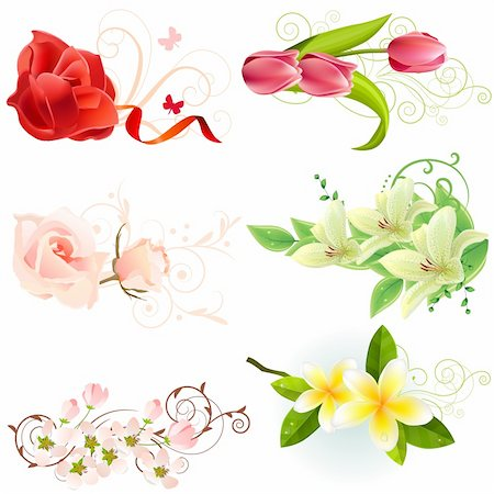 Set of different beautiful floral design elements Stock Photo - Budget Royalty-Free & Subscription, Code: 400-04300160